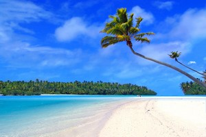 Leiebil Hawaii